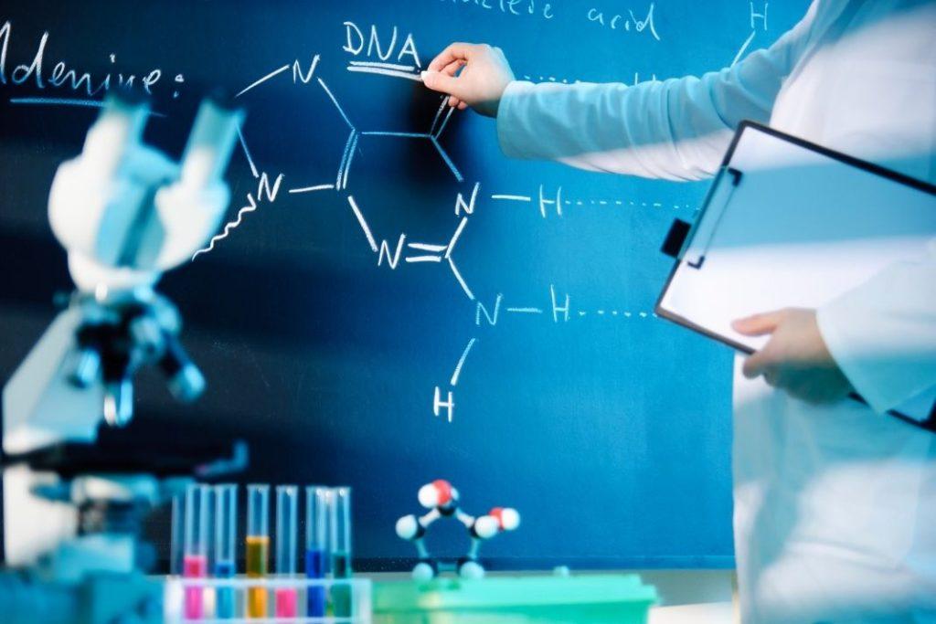 DNA-Synthese beschreibt die Erzeugung von DNA